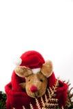 Reniferowi boże narodzenia z czerwonym kapeluszem. Obrazy Royalty Free