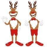 Reniferowi kreskówek Boże Narodzenia wektorowa ilustracja Fotografia Royalty Free
