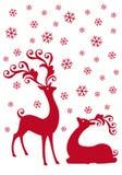 reniferowy opad śniegu Fotografia Royalty Free