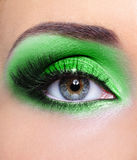 Renivellement d'oeil de femme avec les fards à paupières verts Images stock