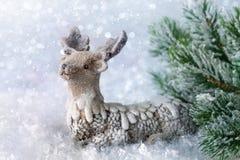 Renna con neve Fotografia Stock