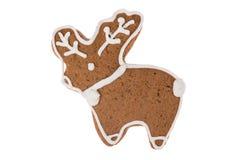 Renna del pan di zenzero di Natale isolata su un fondo bianco Fotografie Stock
