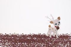 Renna nella neve   Immagine Stock