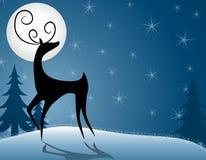 Renna o cervi che si leva in piedi nella luce della luna Fotografia Stock
