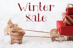Renne avec le traîneau sur la neige, vente d'hiver des textes Image libre de droits