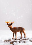 Renne dans la neige Images libres de droits