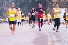 Rennen der Marathonläufer im Jahre 2015 Stockbild