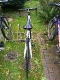 Rennende fiets Stock Foto