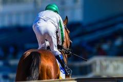 Rennpferd-Jockey Track Stockbild