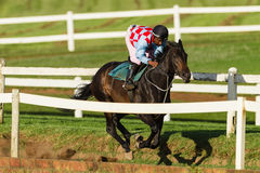 Rennpferd-Jockey Training Run Track Lizenzfreies Stockfoto