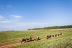 Rennpferde, die Landschaft ausbilden Lizenzfreie Stockfotos