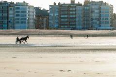 Rennpferdtraining auf dem Strand stockfoto