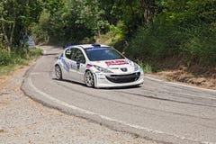 Rennwagen Peugeot 207 Stockbild