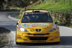 Rennwagen Peugeots 207 während des Rennens Lizenzfreie Stockfotografie