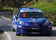 Rennwagen Peugeots 207 während des Rennens Stockbilder