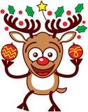 Reno agradable que sostiene las chucherías y los ornamentos de Navidad Imagen de archivo