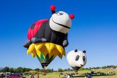 Reno Balloon Race imagen de archivo libre de regalías