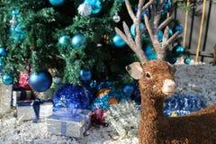 Reno de la Navidad Diseñe la decoración con los regalos del árbol de navidad y de la Navidad en fondo Fotografía de archivo libre de regalías