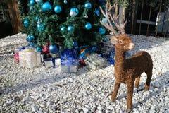 Reno de la Navidad Diseñe la decoración con los regalos del árbol de navidad y de la Navidad en fondo Foto de archivo