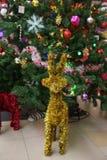 Reno de oro adornado en el árbol de navidad Fotos de archivo libres de regalías