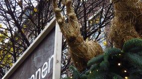 Reno decorativo de la Navidad que mira abajo de árbol Foto de archivo
