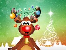 Reno en la Navidad Foto de archivo libre de regalías