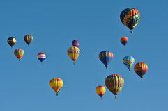 Reno Hot Air Balloon Race Royalty Free Stock Photo