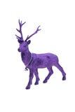 Reno púrpura de la Navidad Imagenes de archivo