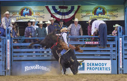 Reno Rodeo Photographie stock libre de droits