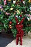 Reno rojo adornado en el árbol de navidad Fotos de archivo libres de regalías