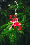 Reno y picea verde Decoración festiva del ` s del Año Nuevo Foto de archivo libre de regalías