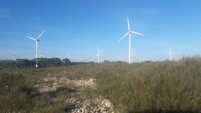 renouvelable的Energie 库存图片