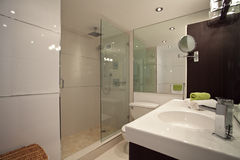 Renovated Bathroom Royalty Free Stock Image