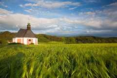 Renovated church on the edge of a cornfield Royalty Free Stock Image