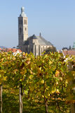 Renovated vineyard in Kutna Hora Royalty Free Stock Images