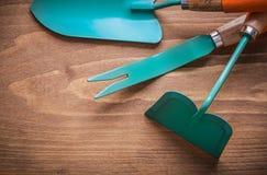 Rensa hackan för skopahandspade på det wood brädet som arbeta i trädgården begrepp Royaltyfri Fotografi