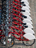 Rent a bike. Bikes for rent, healthy transport in the city stock image