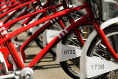 Rent a bike in the city of Antwerp. The common red bikes you can rent in the beautiful city of Antwerp, Belgium Stock Images