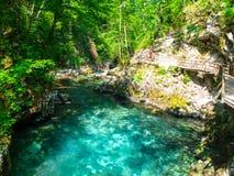 Rent blått vatten av den Radovna floden i den Vintgar klyftan Naturliga vattenfall, tips och forsar och turist- träbana Royaltyfri Foto