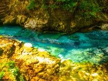 Rent blått vatten av den Radovna floden i den Vintgar klyftan Naturliga vattenfall, tips och forsar och turist- träbana Royaltyfria Bilder