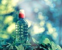 Rent buteljerat vårvatten Arkivfoto