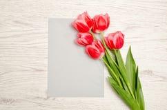 Rent grått ark av pappers- och rosa färgtulpan på en ljus träbakgrund Bästa sikt, utrymme för text Royaltyfria Bilder
