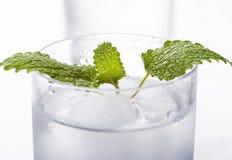 Rent mineralvatten med is Fotografering för Bildbyråer