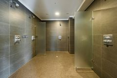 Rent och modernt duschrum i konditionstudio royaltyfri fotografi