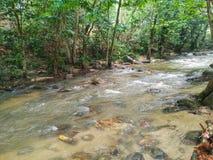 Rent vatten och genomskinlig flod Arkivbild