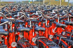 Rental bicycle parking. With red bikes on Wadden island of Schiermonnikoog, Netherlands royalty free stock image