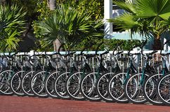 Rental Bicycles Stock Photos