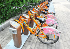 Rental bicycles Stock Image