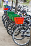 Rental Bicycles in La Digue, Seychelles Stock Image