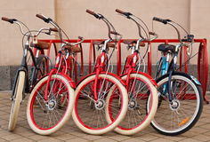 Rental of bicycles in the russian city Royalty Free Stock Photography